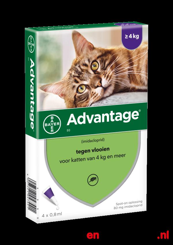 Advantage kat vanaf 4 kg